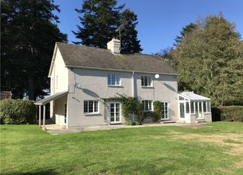 Thumbnail 4 bed detached house to rent in Berwick St John, Shaftesbury, Dorset