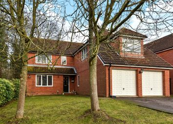 Thumbnail 4 bed detached house to rent in Roughgrove Copse, Binfield