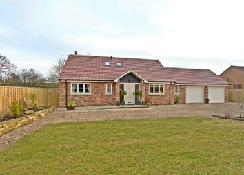 Thumbnail 3 bed detached bungalow for sale in Orchard Lodge, Manor View, Rillington, Malton