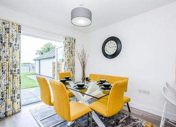 Thumbnail 4 bed detached house for sale in Hamilton Close, Great Plumstead, Norwich