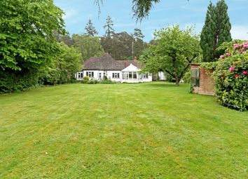 Thumbnail 4 bed bungalow to rent in Tilford Road, Rushmoor, Farnham