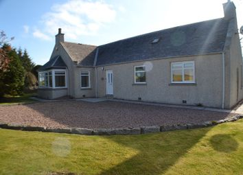 Thumbnail 3 bed bungalow to rent in Dorbshill, Ellon, Aberdeenshire