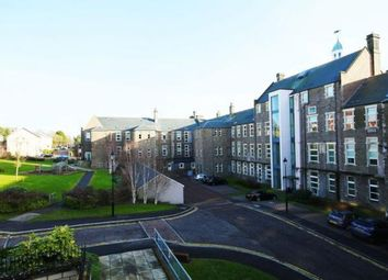 2 bed flat to rent in Scrimgeour Place, Dundee DD3