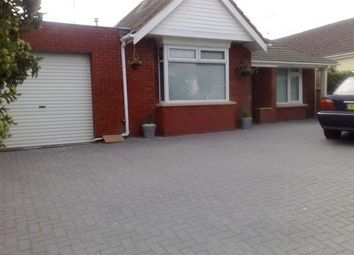 Thumbnail 4 bed bungalow to rent in Drove Road, Swindon