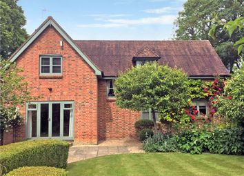 Thumbnail 4 bed detached house to rent in Manor Road, Gussage St. Michael, Wimborne, Dorset
