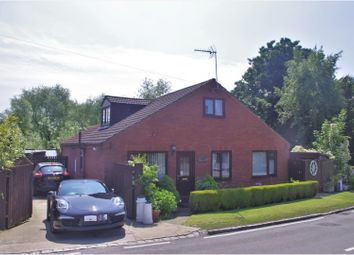 Thumbnail 4 bed detached bungalow for sale in Great Langton, Northallerton