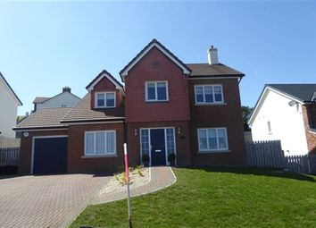 Thumbnail 4 bed property to rent in 7 Reayrt Ny Glonney Drive, Lonan