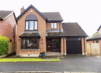 Thumbnail 4 bed detached house to rent in Ashvale Park, Hillsborough