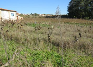 Thumbnail Land for sale in Cela, Cela, Alcobaça