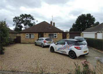 Thumbnail 4 bed detached bungalow to rent in Park Road, Deeping St James, Peterborough, Lincolnshire