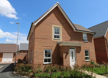 Thumbnail 4 bed detached house to rent in Whitebeam Close, Edwalton, Nottingham