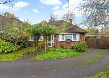 Thumbnail 3 bed detached bungalow for sale in Ayling Hill, Aldershot, Hampshire