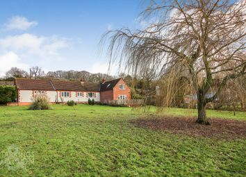 Thumbnail 5 bed detached bungalow for sale in Church Lane, Haddiscoe, Norwich (Between Gorleston & Beccles)