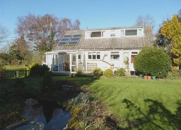 Thumbnail 4 bed detached house for sale in Longlands Close, Westbury