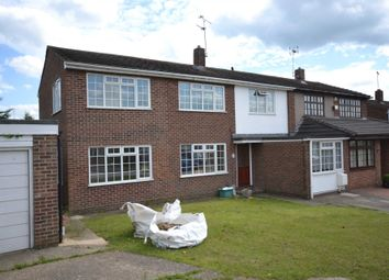 Thumbnail Room to rent in Hill View Road, Chelmsford