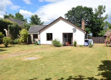 Thumbnail 3 bed bungalow to rent in Ash Thomas, Tiverton, Devon