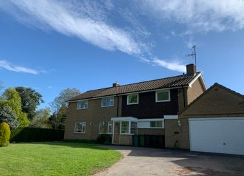 Thumbnail 5 bed detached house to rent in Main Street, Bushby
