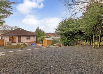 Thumbnail 4 bed bungalow for sale in Inchcross, Birniehill, Bathgate