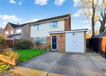 Thumbnail 4 bed detached house for sale in High Street Green, Sible Hedingham, Essex
