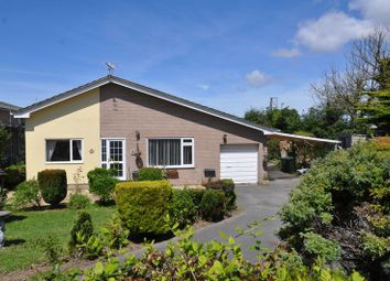 Thumbnail 3 bedroom detached bungalow to rent in Allenstyle View, Yelland, Barnstaple