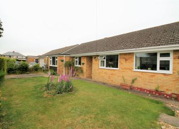 Thumbnail 4 bed detached bungalow to rent in Hartsgrove Close, Blackfield, Southampton