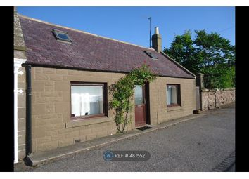 Thumbnail 2 bed semi-detached house to rent in Seaview Terrace, Johnshaven