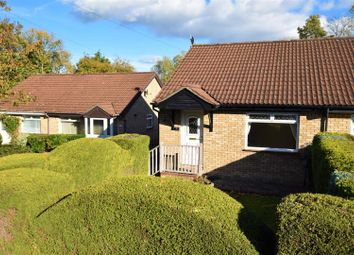 Thumbnail 2 bed bungalow to rent in Hollyrood Close, Barry