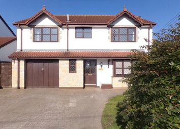 Thumbnail 4 bedroom detached house to rent in Purewell, Bridgwater