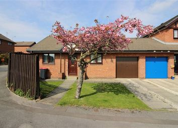 Thumbnail 2 bed bungalow for sale in Sebastian View, Brinsworth, Rotherham