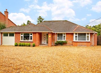 Thumbnail 4 bed detached bungalow for sale in Heatherwold, Newtown, Newbury, Berkshire