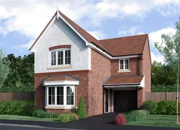 "Thumbnail 3 bedroom detached house for sale in ""Hayfield"" at Aldbury Close, Stafford"