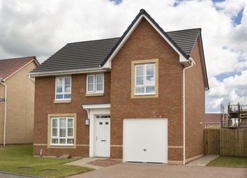 "Thumbnail 4 bed detached house for sale in ""Dornoch"" at Manse Road, Stonehouse, Larkhall"