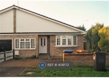 Thumbnail 3 bed bungalow to rent in Knolles Crescent, North Mymms, Hatfield