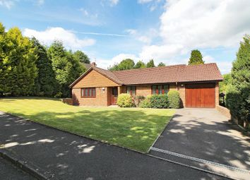 Thumbnail 3 bed detached bungalow for sale in The Rise, East Grinstead, West Sussex