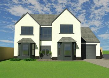 Thumbnail 5 bedroom detached house for sale in Mulberry Grove, Llanarthne