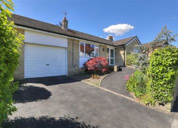 Thumbnail 3 bed bungalow for sale in 7, Bushey Wood Road, Dore