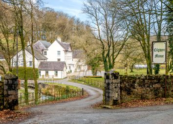 Thumbnail 28 bed detached house for sale in Llangadog, Nr Llandovery, Carmarthenshire