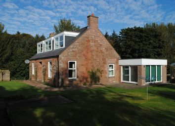 Thumbnail 5 bed cottage to rent in Inverkeilor, Arbroath