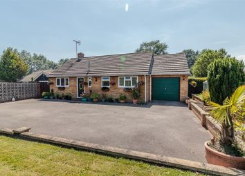 Thumbnail 2 bedroom detached bungalow for sale in Maldon Road, Margaretting, Ingatestone