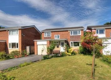 Thumbnail 4 bed detached house to rent in Netherton Close, Chester Le Street