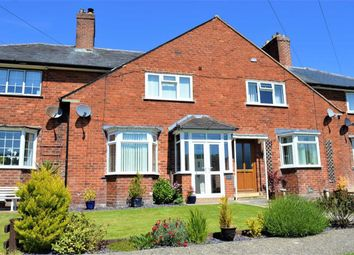 Thumbnail 3 bed terraced house to rent in 8, Dinam Terrace, Upper Canal Road, Newtown, Powys