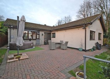 Thumbnail 3 bed detached bungalow to rent in Large Detached Bungalow, Chepstow Road, Newport