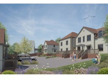 Thumbnail 4 bedroom detached house for sale in Burry Road, St. Leonards-On-Sea
