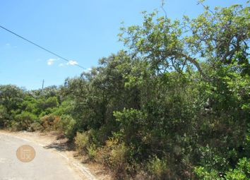 Thumbnail Land for sale in Conceição E Estoi, Conceição E Estoi, Faro