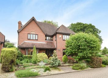 Thumbnail 4 bed detached house for sale in Orchard Close, Bromham, Bedford