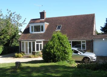 Thumbnail 4 bed bungalow to rent in West Marden, Chichester, West Sussex