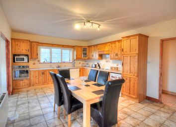 Thumbnail 4 bed bungalow for sale in Winetavern, Baltinglass, Wicklow