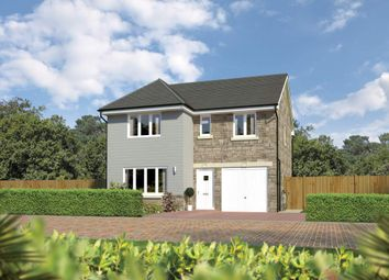 "Thumbnail 4 bed detached house for sale in ""Dukeswood"" at Beech Path, East Calder, Livingston"