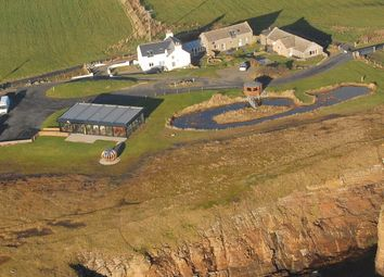 Thumbnail Leisure/hospitality for sale in Banks Of Orkney, Cleat, South Ronaldsay, Orkney