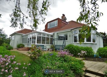 Thumbnail 5 bed bungalow to rent in Hetton Road, Houghton Le Spring